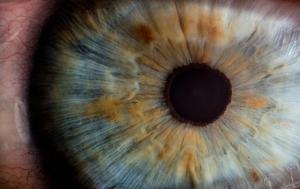 imagem ampliada de olho com foco na íris