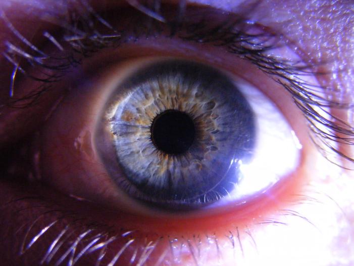 imagem ampliada de olho aberto com íris azul