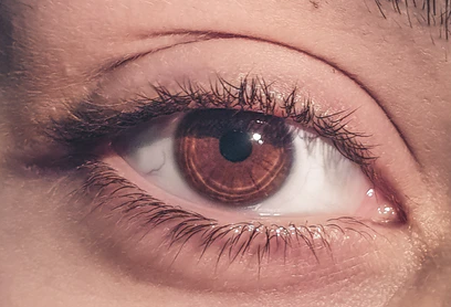 imagem ampliada de olho de mulher com íris castanho escuro
